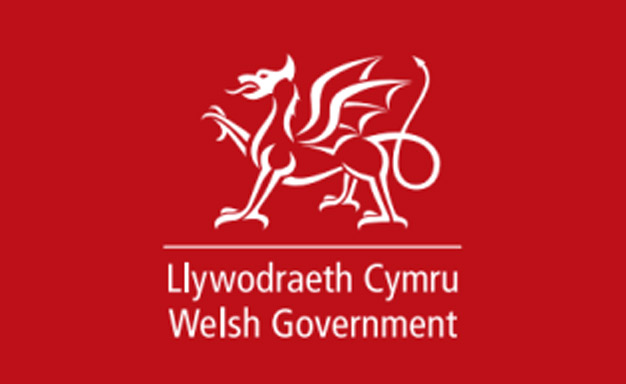 Welsh Government Building Survey